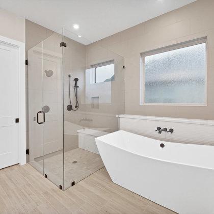 Walk-in frameless glass shower and freestanding tub
